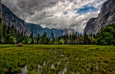 Yosemite Valley0045