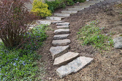 Steps and Myrtle