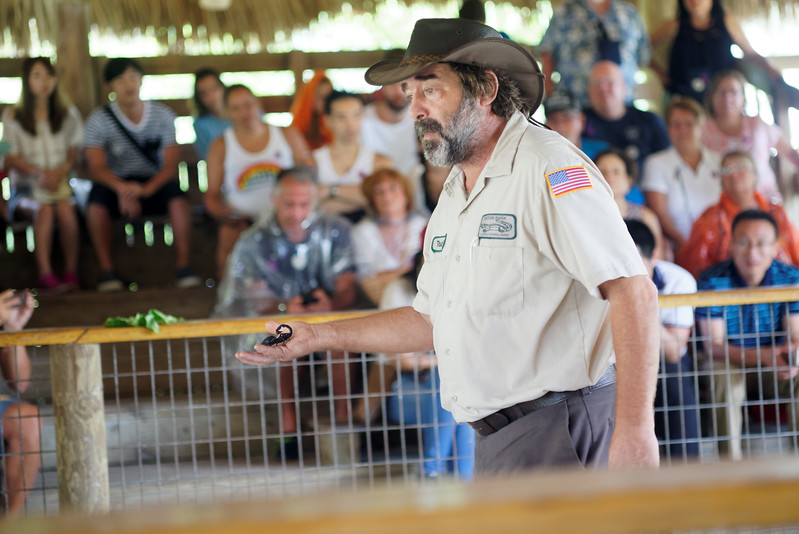 Wildlife show at Gator Park