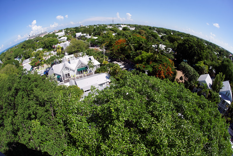 Northern view from the Key West Lighthouse. You can see the cruise ship in the upper left corner.