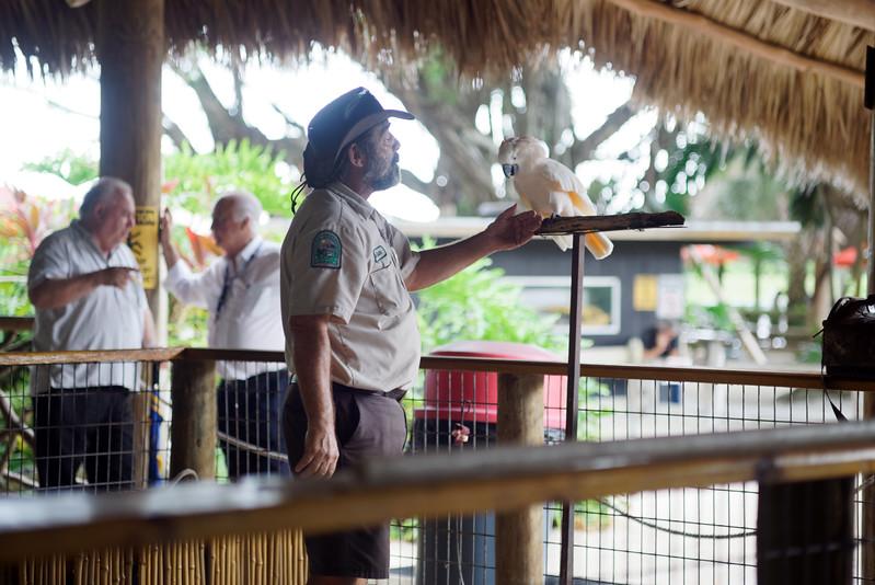 Wildlife show at Gator Park