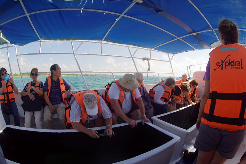 The glass bottomed boat at Mahahual