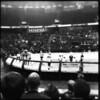 Tilted Thunder Rail Birds roller derby, Comcast Arena, Everett WA, December 17, 2011.