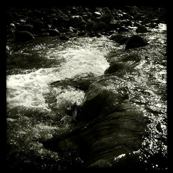 Lynn Creek, Lynn Headwaters Regional Park, North Vancouver BC, September 4, 2011.
