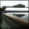 Bellevue Downtown Park, Bellevue WA, December 19, 2011.