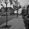 A walk around downtown Port Coquitlam, November 14, 2009.