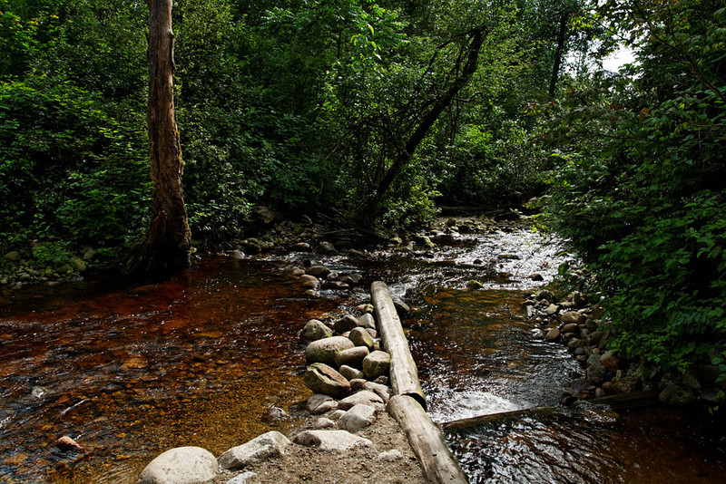 Shoreline Park/Rocky Point Park, Port Moody BC, July 1, 2011.<br /> <br /> The fish hatchery.