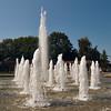 Queen Elizabeth Park, August 23, 2009.