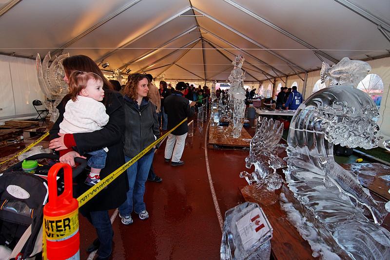 Ice sculptures, O Zone, Minoru Park, Richmond, BC, February 21, 2010.