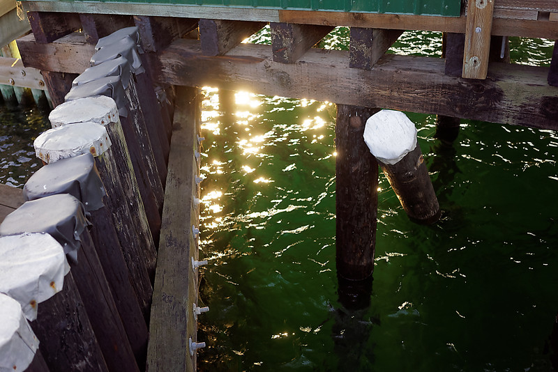 Sunlight on the water under the wharf.