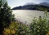 Squamish River, Squamish BC, August 11, 2010