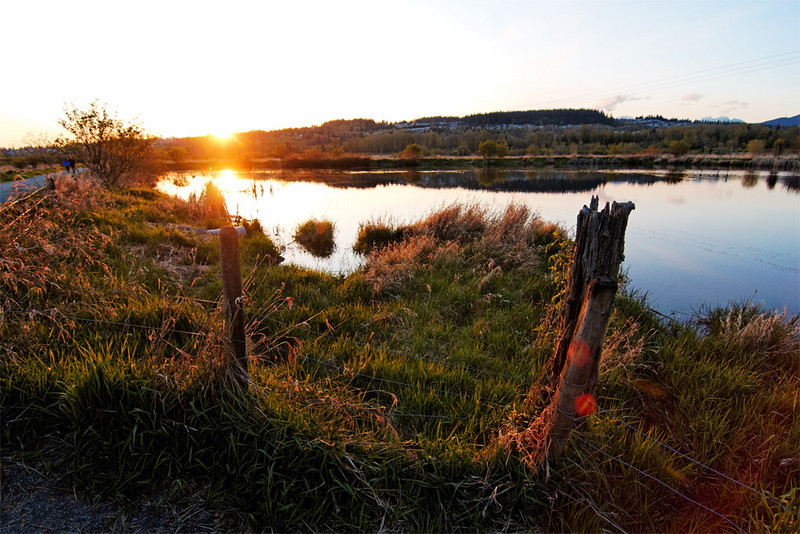 Sunset at Colony Farm Regional Park, Coquitlam BC, April 9, 2010.