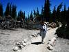 2c Bumpass Trail Jean 1