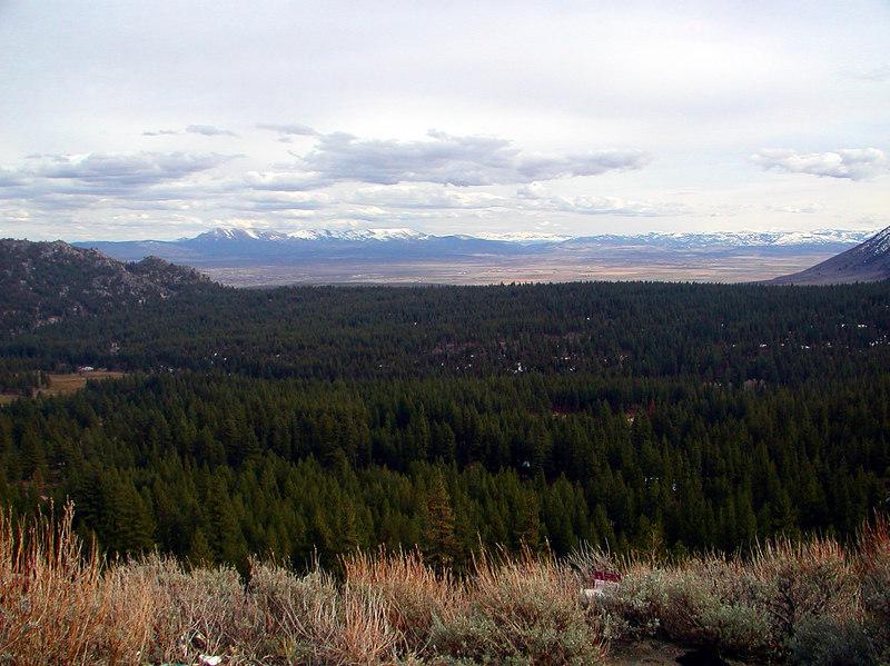 1 Carson Valley