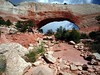 8e 05 Wilson Arch Mid Rocky