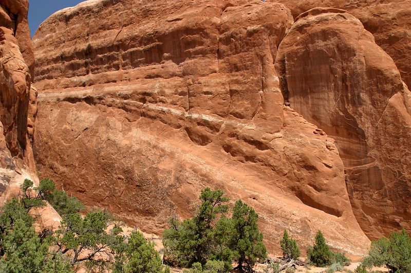 Devil's Garden: Welcome to Red Rock Country!