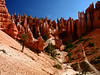 10d 13 BC Navajo Hoodoo Hikers