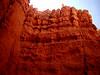 10b 06 BC Navajo Loop Look Up