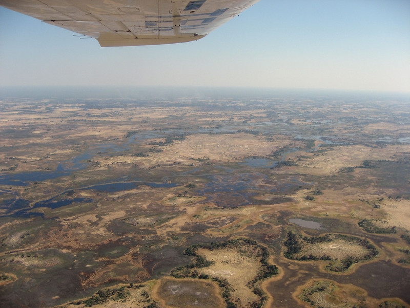 The Okavango Delta .