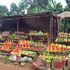 A vegetable stand where we stopped to shop.