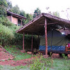 After 10 1/2 hours in the van, we finally arrived at Bwindi.  This is our tent at the Kitandara Luxury Tented Lodge.