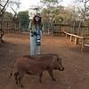 Warthogs seemed to like Sheri