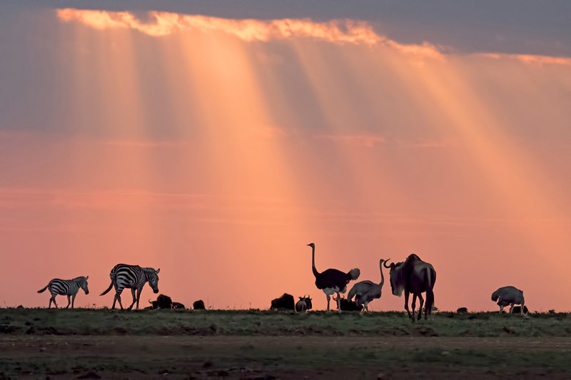 Because of the unstable weather, we didn't have classic African sunsets, but the ones we did have were magnificent.