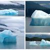 The icebergs were stunning.