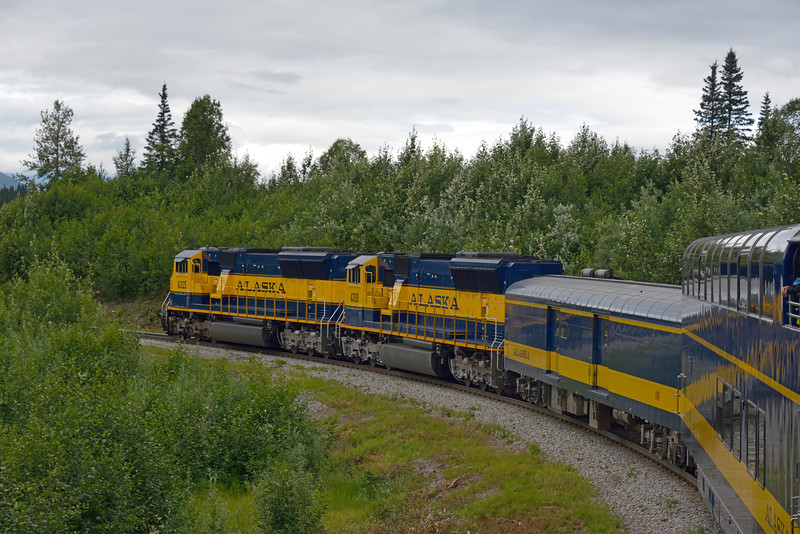 We spent the night in Anchorage then boarded a train for Denali.  It was a 7.5 hr ride to our lodge located just outside the national park entrance.