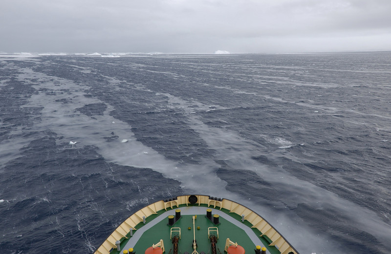 Next day, we see our first ice.  The oily looking film is what sea ice looks like as it begins to form.