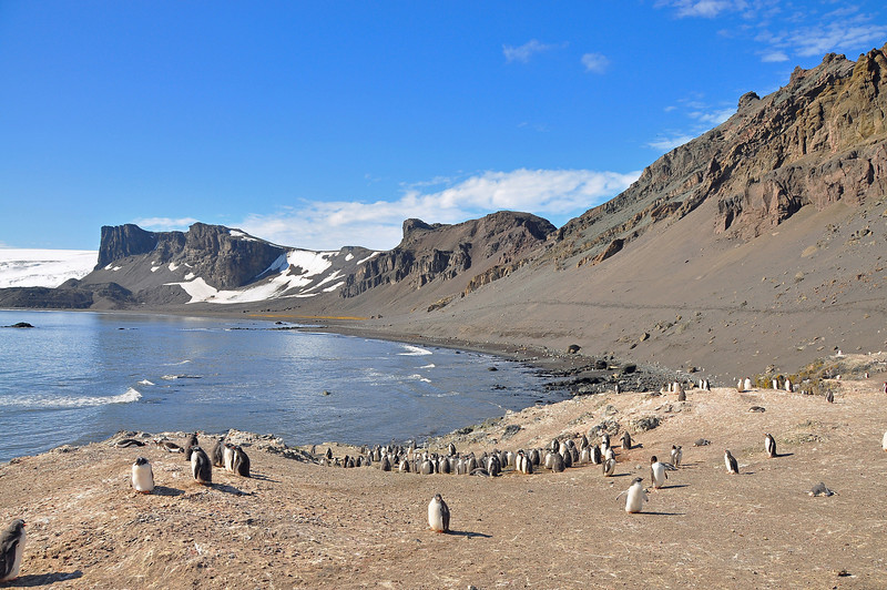 As with many of the islands in this part of Antarctica, Hannah Point is volcanic.