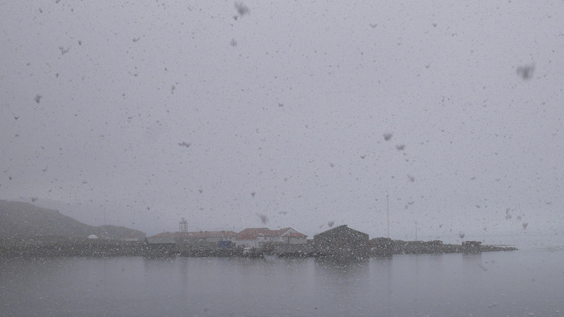 After leaving Hercules Bay, we sailed to Grytviken where Ernest Shackleton and Frank Wild are buried.  By the time we got there, snow was falling and it had become very dark.