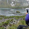 Once on land, we climbed up to gentoo and macaroni colonies.  That's Shameem taking photos with her ipad.  Shameen's camera equipment drew lots of attention from the serious photographers on the ship :-)