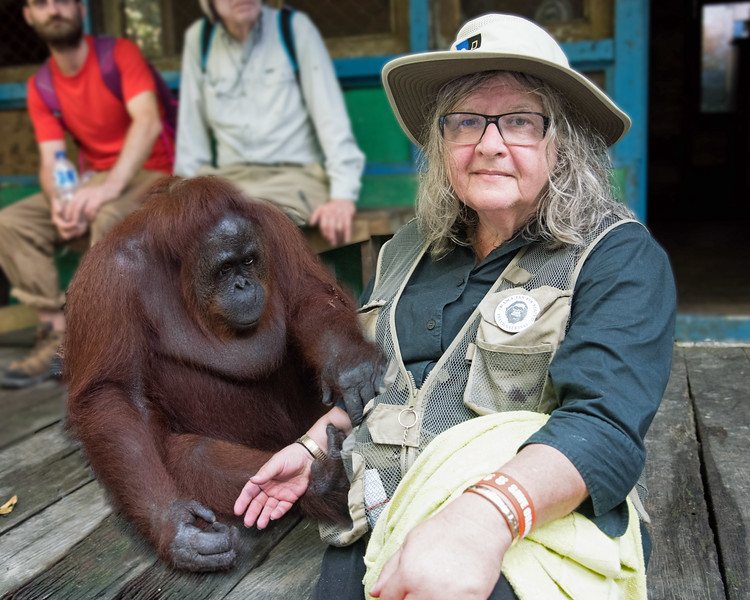 """Siswi and Dr. Galdikas.  <br /> <br /> Dr. Birute Mary Galdikas has been fighting to protect orangutans and their rainforest habitat for over 46 years.  She's a  truly remarkable person and the world's foremost authority on the orangutan.<br /> <br /> In 1969 while studying at the University of California, Dr. Galdikas met the famed anthropologist, Dr. Louis Leakey.  It took her 3 years to persuade him to find funding for her, as he'd done for Diann Fosse (mountain gorillas) and Jane Goodall (chimpanzees), but he came through.  Leakey called his three disciples the """"Trimates"""".<br /> <br /> At the age of 25, Dr. Galdikas and her first husband moved to Borneo, at the time one of the wildest and most inhospitable places on earth.  She spent months alone in the forest studying orangutans, fighting poachers and leeches, and slowly delivering on her vision. <br /> <br /> I encourage you to """"google"""" Dr. Galdikas.  Her story is amazing, uplifting, and inspirational.  After just one week with her, she has changed me.  Please read the caption on the very last photo in this gallery.  It says it all."""
