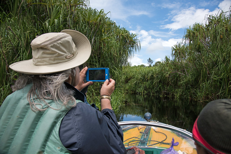 Even after 46 years of traveling up and down these waterways, Dr. Galdikas is still taking pictures and video.  This is what I loved most about her.  Her eyes continue to light up whenever she sees an orangutan or the incredible natural beauty of Borneo.