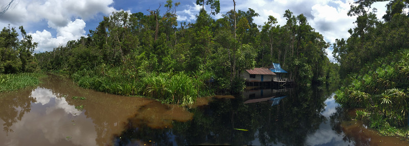 Many thanks to one of our travel companions for this great panorama.  It shows the split in the river where the black water begins.  We took the right fork.