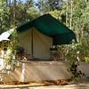 My home at Kanha.