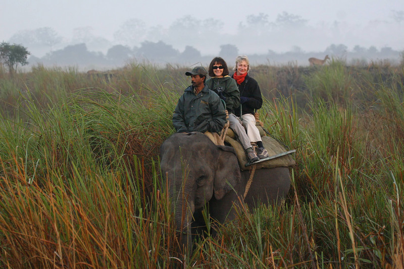This was a great morning.... just Christine and me and the mahout. I didn't even take a camera.