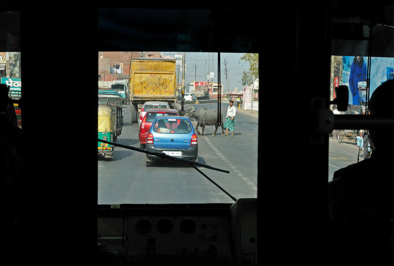 Being a passenger in any vehicle in India is hair-raising, but actually doing the driving is definitely not for the faint of heart.