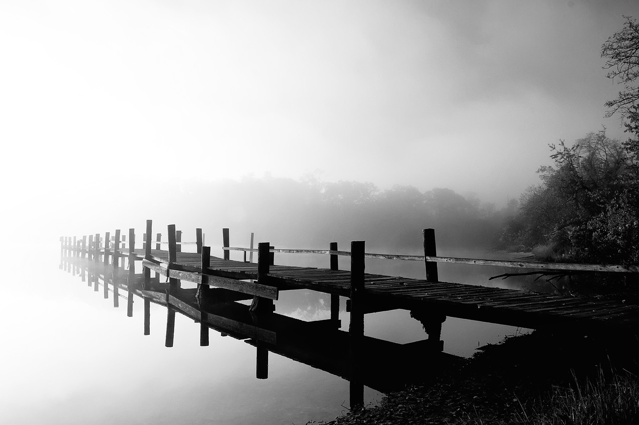 Nov. 8th,  On the way to work, I found a nice foggy pier.  It made for a few nice shots.  I just wish there would have been more trees to capture the color in.