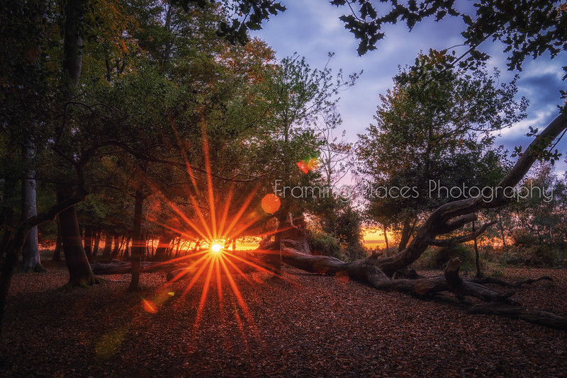 Sunflare Sunrise