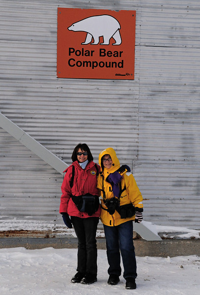 Speaking of polar bear jail, here we are the next morning.