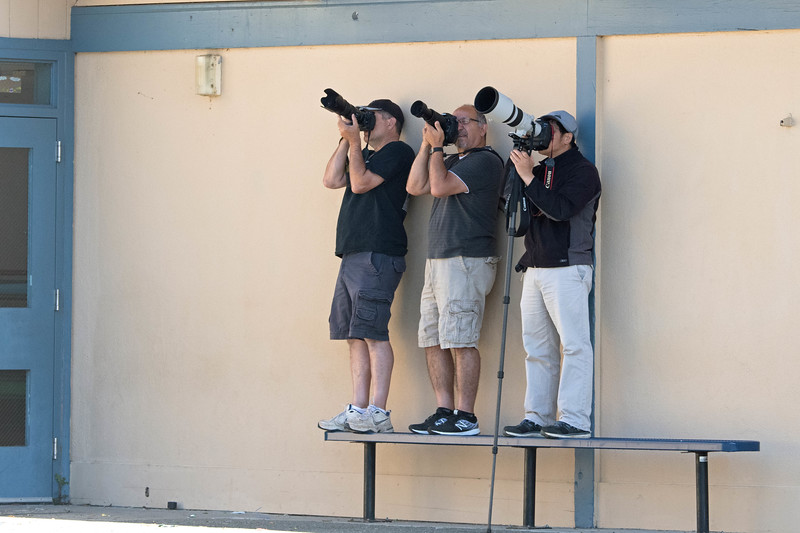 """These were my buddies.  All us """"tiny lens"""" people huddled next to the school building while the """"giant lens"""" folks were maybe 20 yards further out to get a flatter view into the nest."""