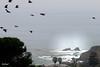 Laguna Beach062217-3-Edit