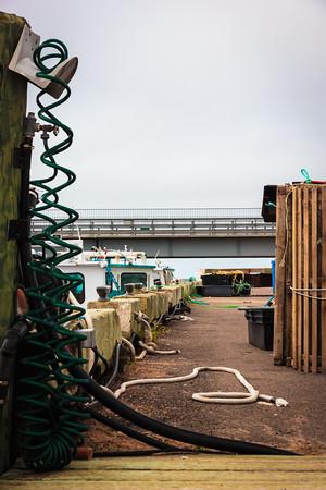 Covehead Harbour #5