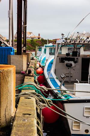 Covehead Harbour #8