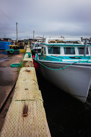 Covehead Harbour #3