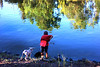 Reflections: a boy and his dog