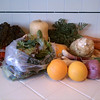 Chard, butternut, mixed greens, oranges, spring onions, potatoes, celery root, carrots.