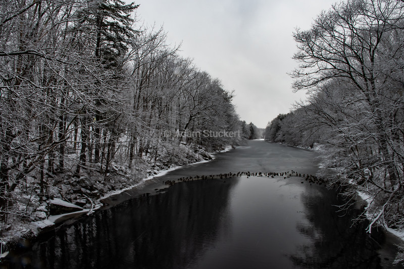 Black and white on the Lamprey River